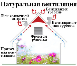 Особенности естественной вентиляции в теплице