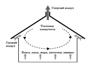 Принцип системы вентилирования