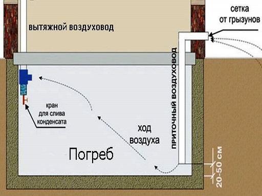 Правильно обустроенная вентиляция в подпольном помещении